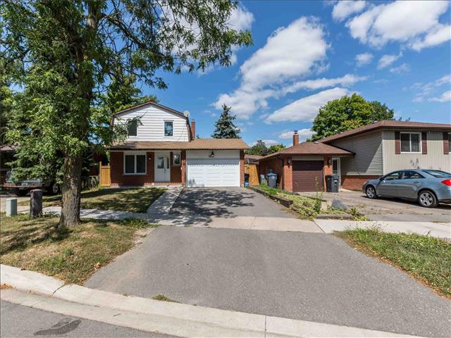 11 Abell Dr